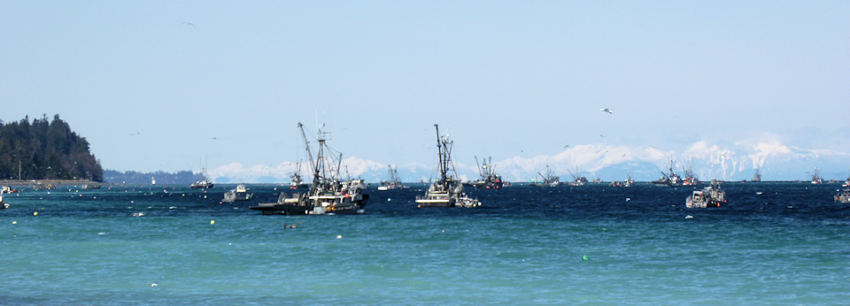 Fishboats with Mainland Mountains